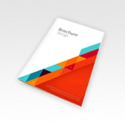 Brochure 120 x 180 mm (DVD)